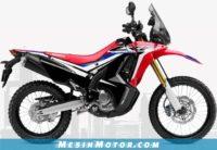Motor Adventure Murah